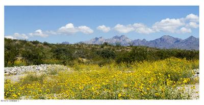5625 CORTE CONJENOS, Las Cruces, NM 88005 - Photo 2
