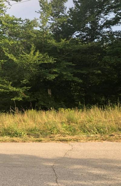 123 LOT 2 & 3 OAKWOOD ESTATE, Jackson, KY 41339 - Photo 2