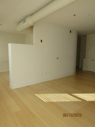 650 S MILL ST APT 224, Lexington, KY 40508 - Photo 2