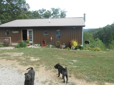7250 OLD BEAVER RD, Frenchburg, KY 40322 - Photo 2