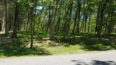 LOT 84 WOOD CLIFF ROAD, Frankfort, KY 40601 - Photo 1