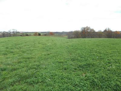 119 ACRE ELIZAVILLE ROAD, Ewing, KY 41039 - Photo 1