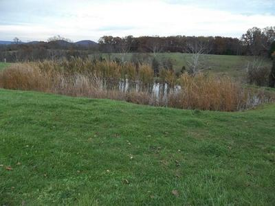 119 ACRE ELIZAVILLE ROAD, Ewing, KY 41039 - Photo 2