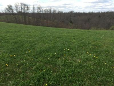 1 WADDY RD, Waddy, KY 40076 - Photo 2