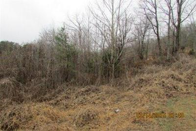 100 MAYHEW CEMETERY RD, Barbourville, KY 40906 - Photo 2