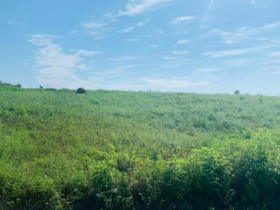 1 WASH RD TRACT C, Frankfort, KY 40601 - Photo 2