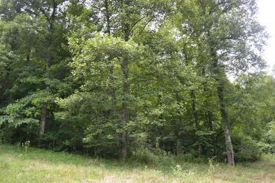 9999 GRAY LANE, Barbourville, KY 40906 - Photo 2