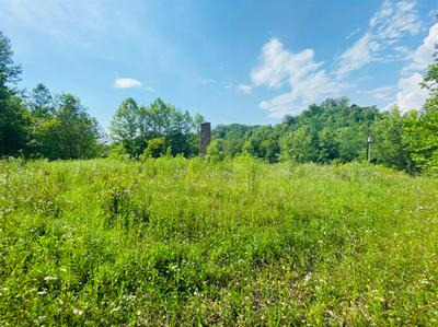 1113 PAWPAW RD, Manchester, KY 40962 - Photo 1
