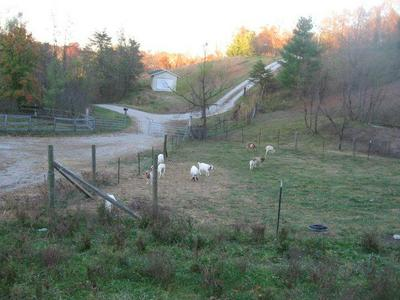 251 B W RIDGE RD, London, KY 40741 - Photo 2