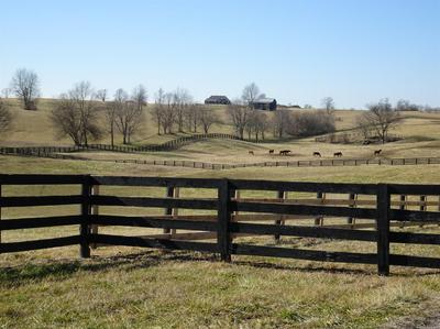 3925 TROY PIKE, Versailles, KY 40383 - Photo 2