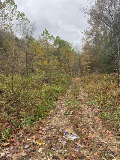 9999 BUFFALO CREEK BULLSKIN RD, Booneville, KY 41311 - Photo 2