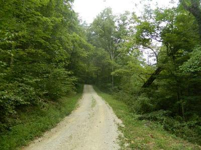 1 IVY PATCH ROAD, Beattyville, KY 41311 - Photo 2