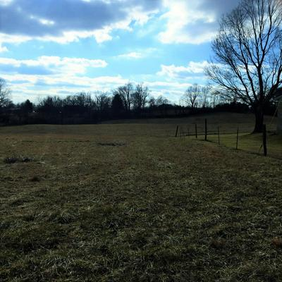 TRACT TABERNACLE ROAD, Campbellsville, KY 42718 - Photo 2