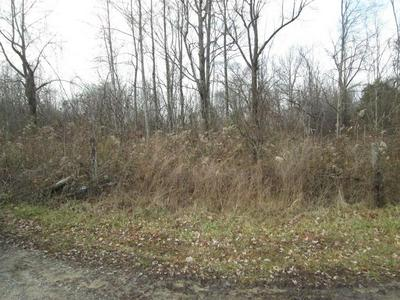 0 - 6 ACRES SPRING ROAD, WALLINGFORD, KY 41093 - Photo 2