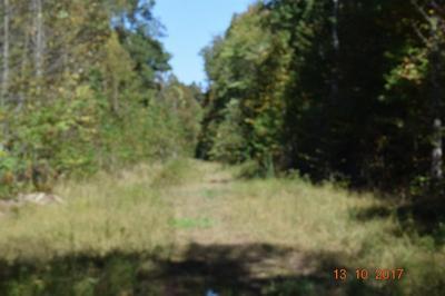 2355 BULLFORK RD, Morehead, KY 40351 - Photo 2