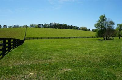 9999 MCGILL WYAN ROAD, London, KY 40741 - Photo 2
