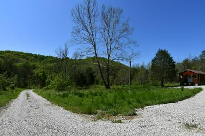 1000 ELK LICK RD, Olympia, KY 40358 - Photo 2