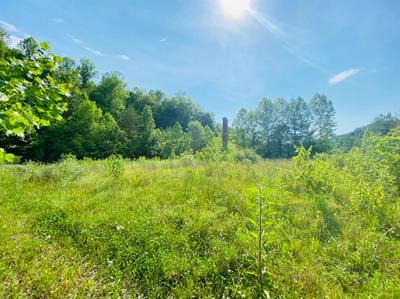 1113 PAWPAW RD, Manchester, KY 40962 - Photo 2