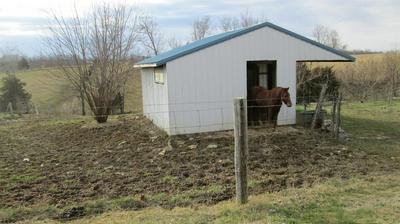 998 ORCHARD RD, FLEMINGSBURG, KY 41041 - Photo 2