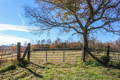 0000 RED FOX ROAD, Williamsburg, KY 40769 - Photo 2