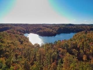TRACT ROCKY BRANCH ROAD, East Bernstadt, KY 40729 - Photo 1
