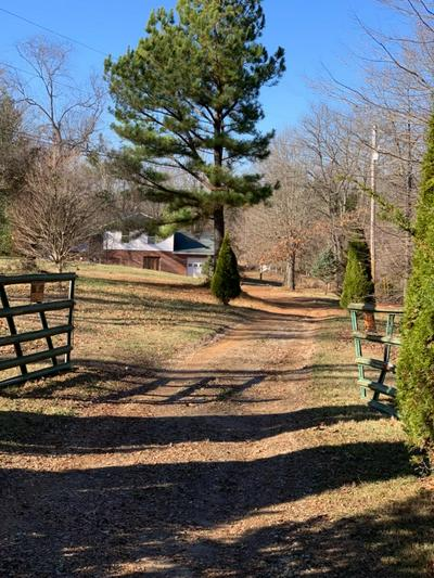 686 BRUNER RD, Brandenburg, KY 40108 - Photo 1