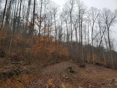 1484 WIND CAVE RD, McKee, KY 40447 - Photo 2