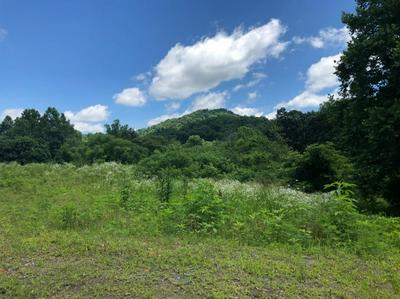 2251 S HIGHWAY 421, MANCHESTER, KY 40962 - Photo 1