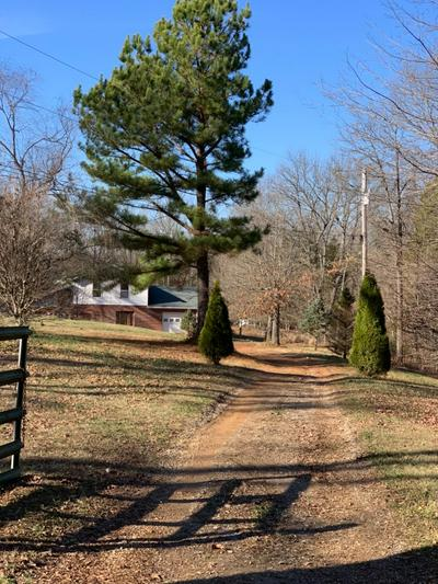 686 BRUNER RD, Brandenburg, KY 40108 - Photo 2