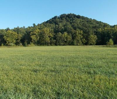 141 - 145 SPRUCE VALLEY LANE, Jeffersonville, KY 40337 - Photo 1