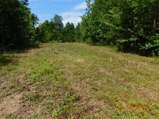 200 JARVE HOLLOW RD, Manchester, KY 40962 - Photo 2