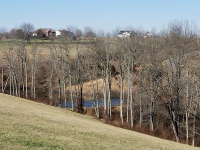 LOT WALKING HORSE WAY, Sharpsburg, KY 40374 - Photo 2