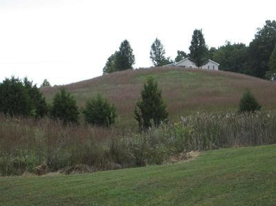 15 HOPE HILL RD, Flemingsburg, KY 41041 - Photo 2