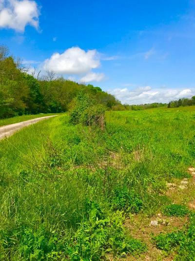 47751 EAST FORK ROAD, Owingsville, KY 40360 - Photo 2