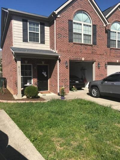 317 HANNAH TODD PL, Lexington, KY 40509 - Photo 2
