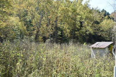 12105 N HIGHWAY 421, Manchester, KY 40962 - Photo 2