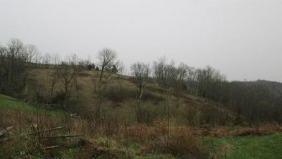 1 HILLTOP RD, Ewing, KY 41039 - Photo 2