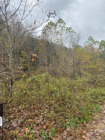 9999 BUFFALO CREEK BULLSKIN RD, Booneville, KY 41311 - Photo 1