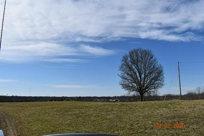 972 WALLINGFORD RD, Flemingsburg, KY 41041 - Photo 2