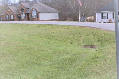 103 EAGLE BEND DR, SADIEVILLE, KY 40370 - Photo 1