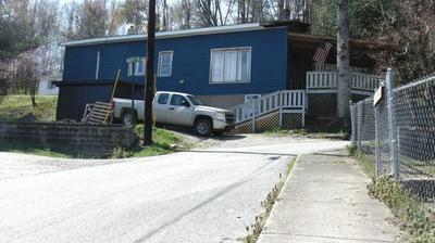 7 MAHAFFEY HILL, Livingston, KY 40445 - Photo 1