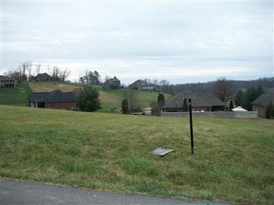 94 CEDAR RIDGE DR, London, KY 40744 - Photo 2
