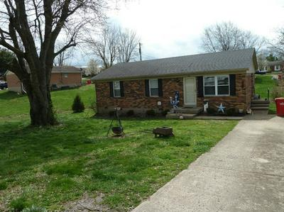 311 OLD LAIR RD, CYNTHIANA, KY 41031 - Photo 2