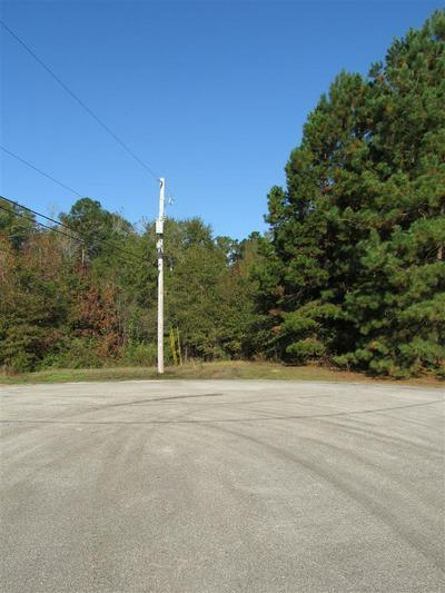 BLOCK E LOT 10 BIRDIE LN, Gladewater, TX 75647 - Photo 1