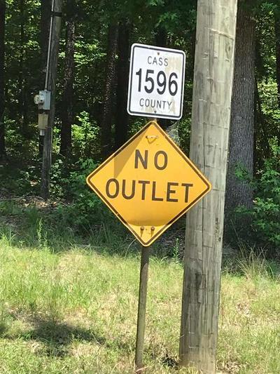 91 COUNTY ROAD 1528, Avinger, TX 75630 - Photo 2