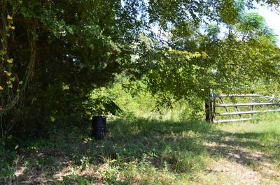 811 COUNTY ROAD 1772, Jefferson, TX 75657 - Photo 2