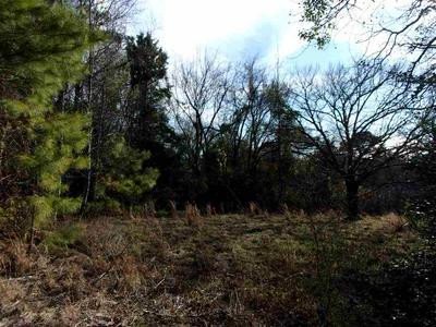 203 SID CRAVER RD, Harleton, TX 75651 - Photo 2