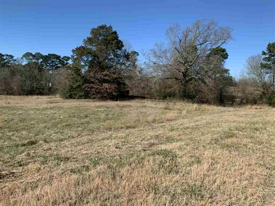 STATE HWY 315, Carthage, TX 75633 - Photo 2