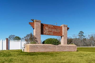 TBD FOX GLOVE LN, Hallsville, TX 75650 - Photo 1