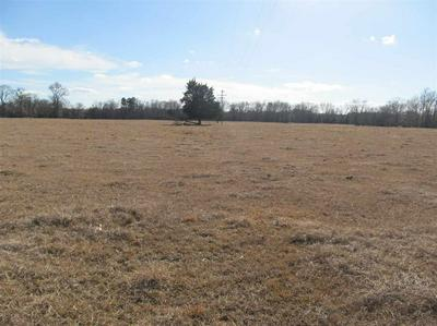 TBD FM 1519, Pittsburg, TX 75686 - Photo 2